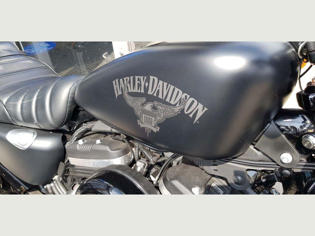 Harley-Davidson Sportster Custom Cruiser 883 Sportster Iron
