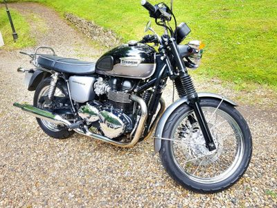 TRIUMPH BONNEVILLE Roadster/Retro 865 T100 Two-Tone