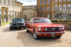 Classic muscle cars include Ford Mustangs (pictured)