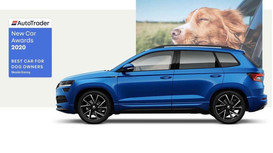 Skoda Karoq, the Best Car for Dog Owners 2020