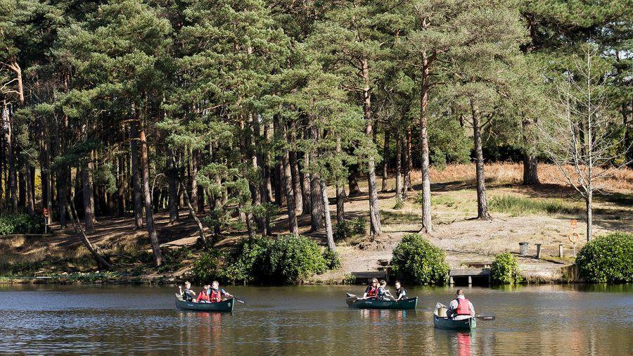 Best Great British campsites for caravanners: Avon Tyrrell Outdoor Activity Centre