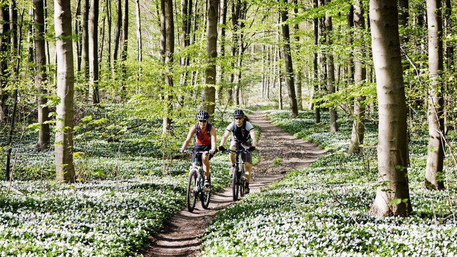 4 Best caravan sites for cyclists