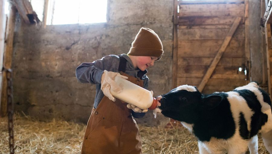 10 Life Experiences Children Can Only Get By Visiting A Farm