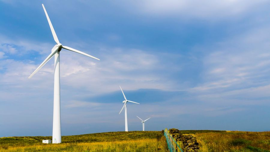 Increase Your Profits And Transform Your Farm With Wind Energy